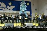 - koncert_orkiestry_osp_2011.jpg